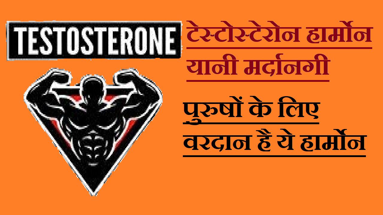 Testostrone Hormone